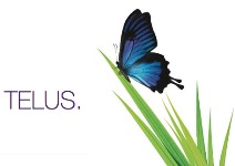 Telus partners with Cisco, Microsoft in hybrid cloud offering
